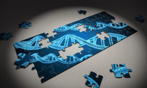Ridefiniamo il DNA della tua azienda